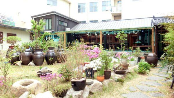 大邱の「ヤクジョン」の庭