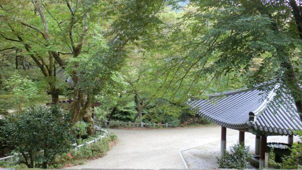 求礼の泉隠寺